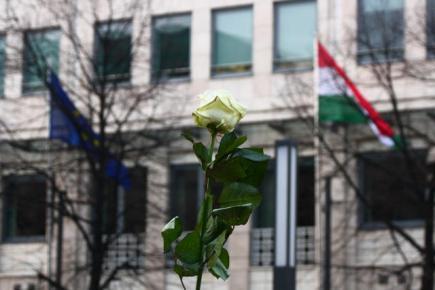 weiße Rosen sind Widerstand und Trauer
